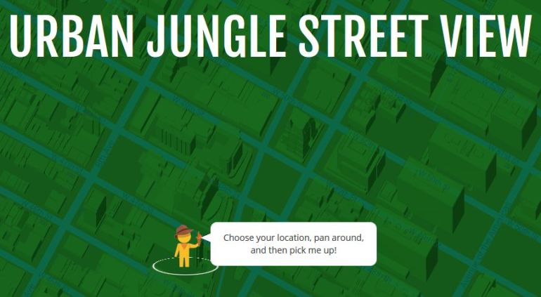 urban jungle street view